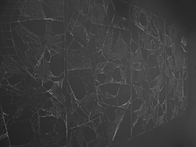 Linda Sanchez - Galerie Bertrand Grimont