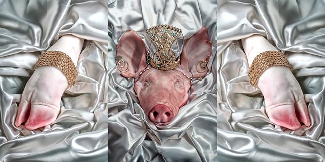 Carne 2010