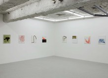 Samuel Richardot - Balice Hertling Gallery