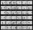 A chicago 10 portrait d une ville   1987  1989 tirage sur papier baryt ilford fb 1k. 300 x 330 cm original tiny