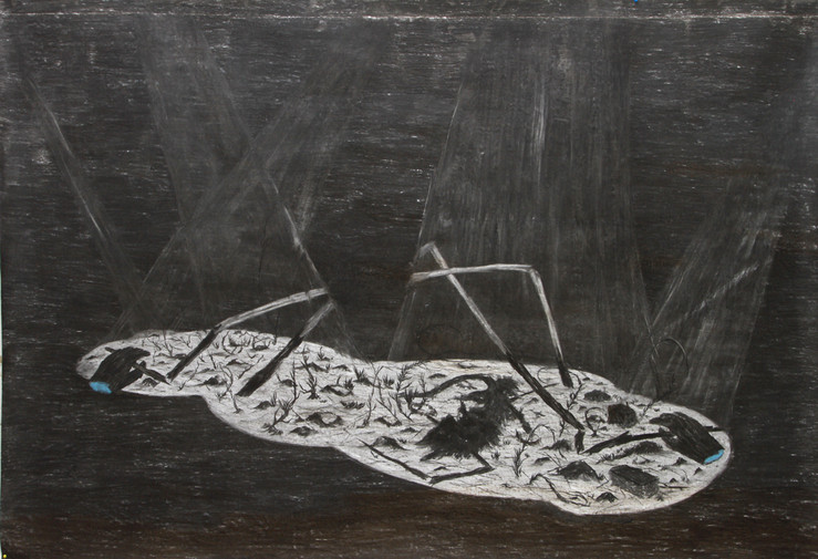 Untitled. charcoal on paper. 155cm x 225cm.2013 large2