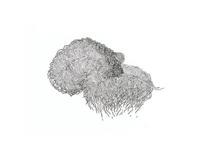 Chic Dessin 2011 - Atelier Richelieu