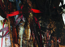 Peter Buggenhout - Laurent Godin Gallery