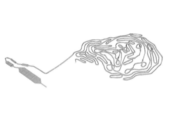 Les mouches volent en carrés - Galerie Bendana | Pinel Art Contemporain