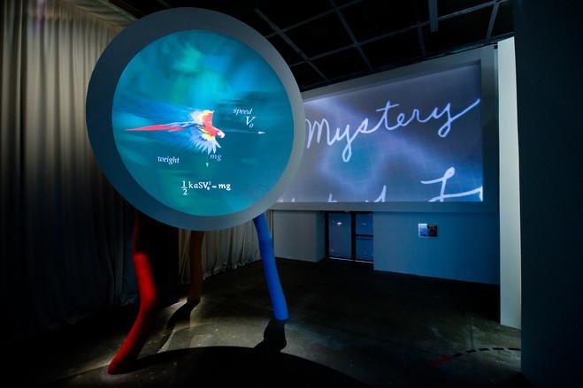 Mathématiques - Fondation Cartier pour l'art contemporain