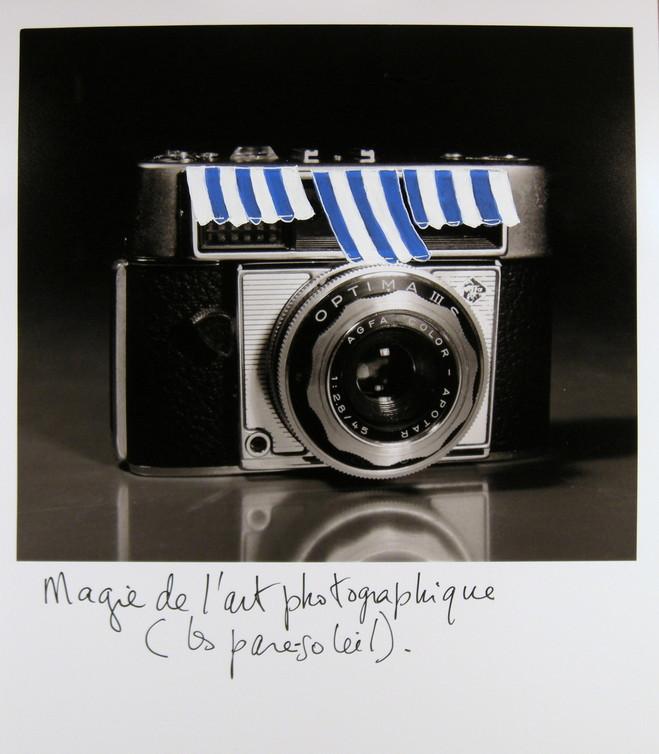Joachim Mogarra - Galerie G-P & N Vallois
