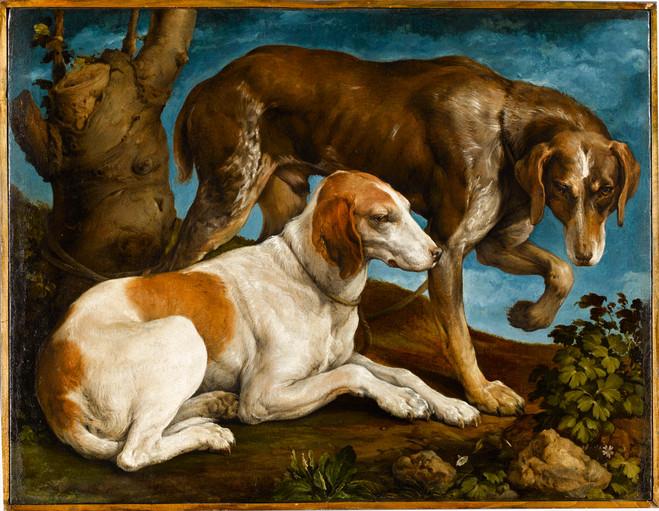 Beauté Animale - Les Galeries nationales du Grand Palais