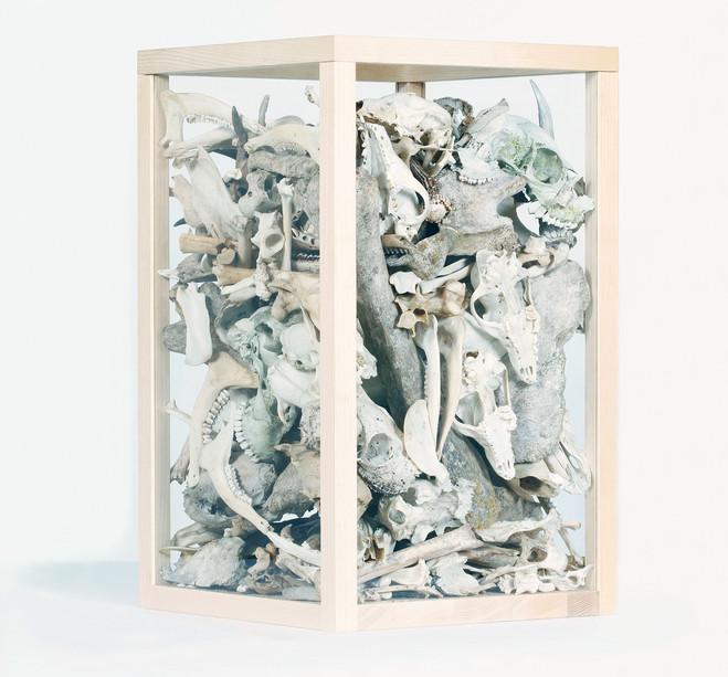 Herman de Vries - Aline Vidal Gallery