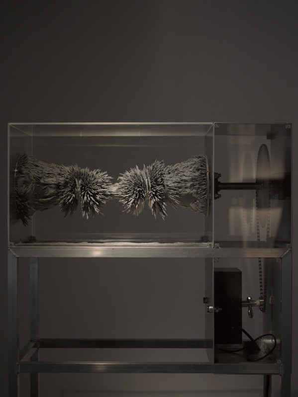 Reversolidus - Galerie Backslash