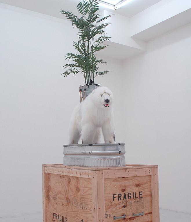 Le théâtre agricole — savoirs vernaculaires, développement durable et impérialisme vert - Musée du quai Branly