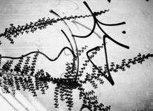 Anri Sala - Centre Georges Pompidou