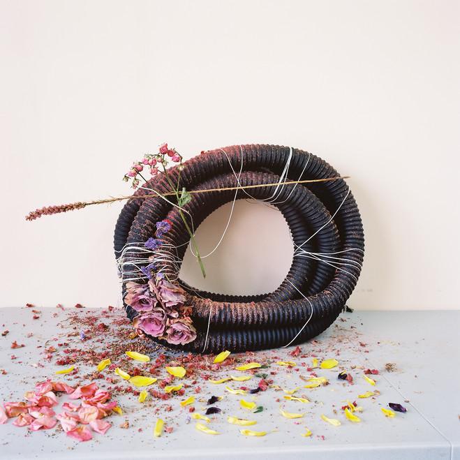 Camille Henrot - Galerie Kamel Mennour