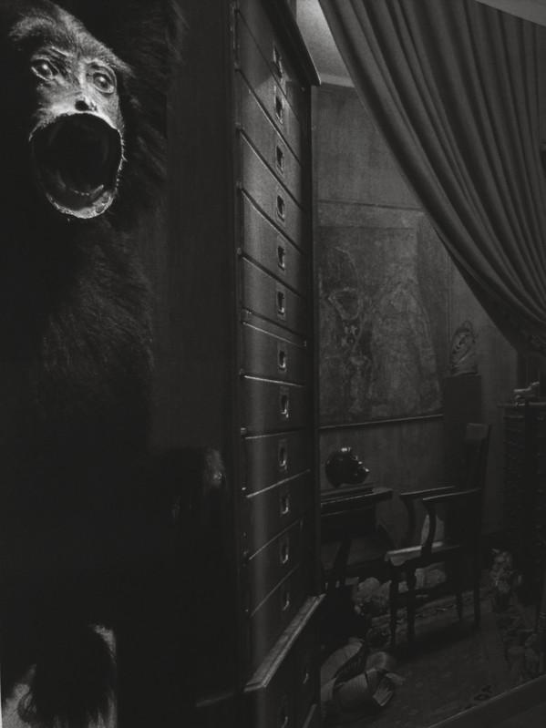 Vanité plurielle - Galerie LWS