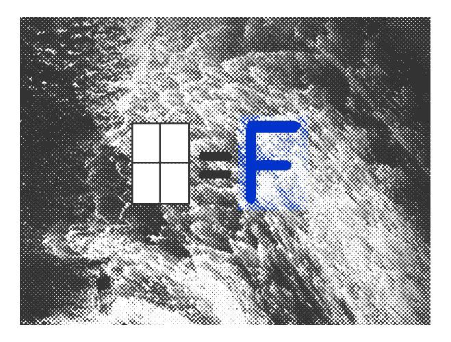 Olivier Peyricot—F=F numéro un - Galerie Mercier & Associés