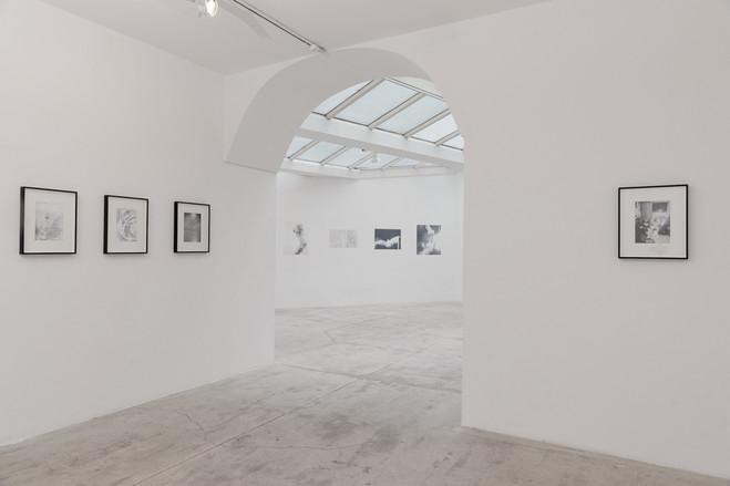 Julien Bismuth - Galerie G-P & N Vallois