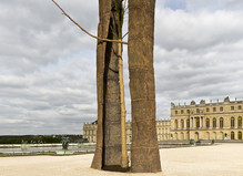 Penone Versailles - Château de Versailles