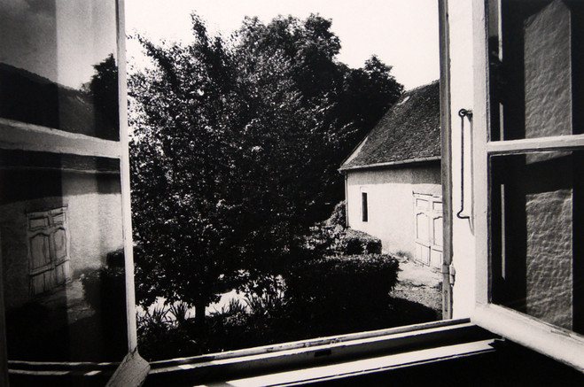 View from the Laboratory - Polka Galerie