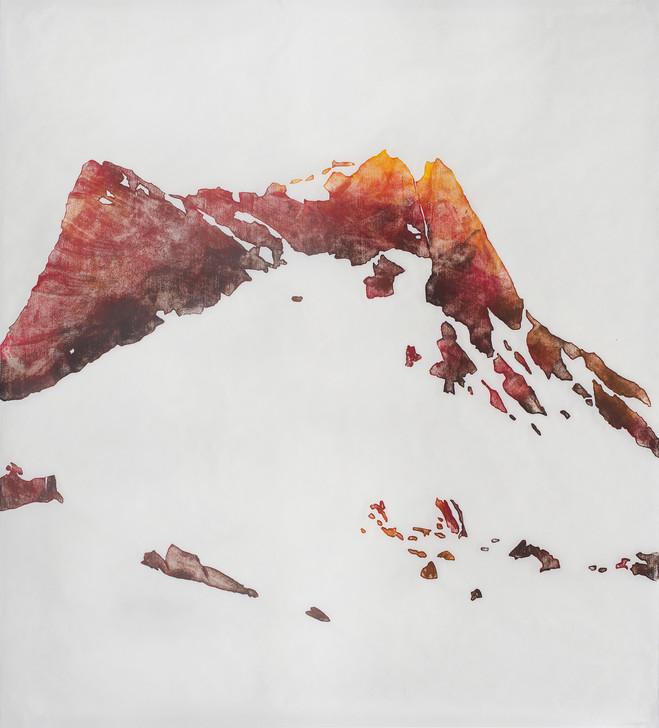 Alois Lichtsteiner - Galerie Farideh Cadot