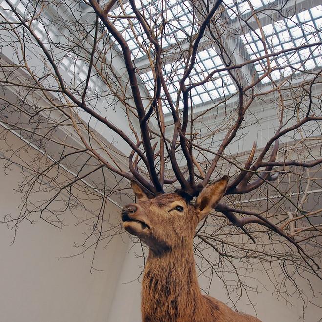 Grand opening of the new gallery in Paris - Galerie Paris-Beijing
