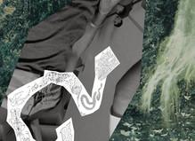 Mille miroirs dans la forêt -  La  Maison d'Art Bernard Anthonioz