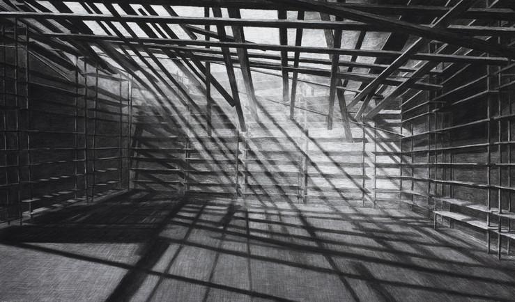 Levi van veluw shadows fusain la galerie particuliere paris large2