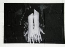 Alicia Zaton - Progress Gallery