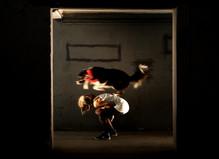 The Dog's Doors - Pépinières européennes pour jeunes artistes