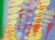 Bernard Moninot - Jean Fournier Gallery