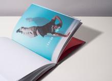 Sylvain Gouraud - Progress Gallery