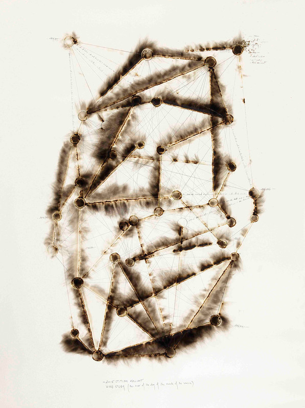 Jitish Kallat - Galerie Daniel Templon