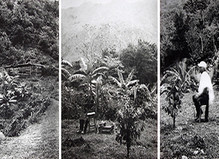 Estenopeicas Rurales - Dohyang Lee Gallery