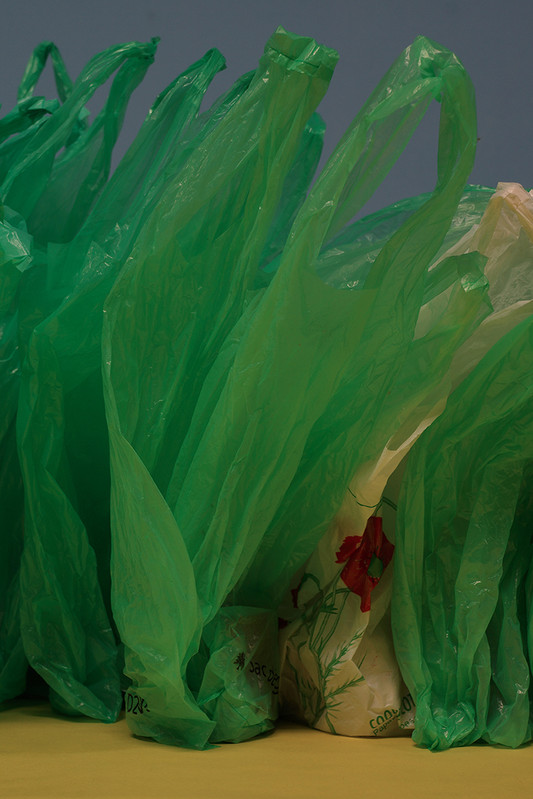 Variations saisonnières—Paul Pouvreau - Galerie municipale  Jean-Collet