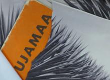 Kapwani Kiwanga - La Ferme du Buisson