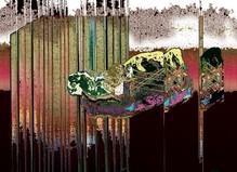 Hard Flowers - Escougnou-Cetraro Gallery