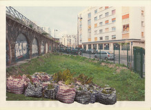 Lois Weinberger - Salle Principale — la galerie
