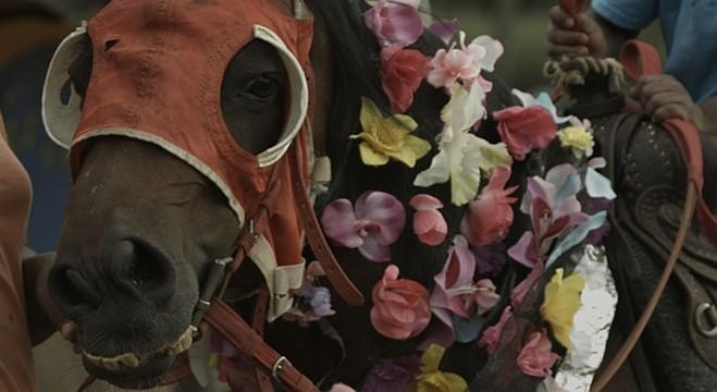 Horseday—Mohamed Bourouissa - Le BAL