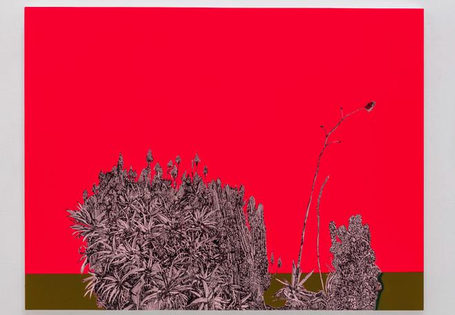 Whitney Bedford - Galerie Art : Concept