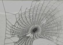 Didier Boussarie—Lyndi Sales - Maria Lund Gallery