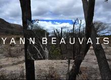 Yann Beauvais, Un cinéma (très) élargi - Fondation d'entreprise Ricard