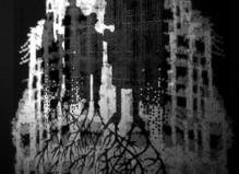 L'Autre… De l'image à la réalité 3/3 : L'Autre nous - Maison populaire