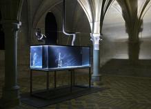 Exposition personnelle d'Hicham Berrada - Abbaye de Maubuisson