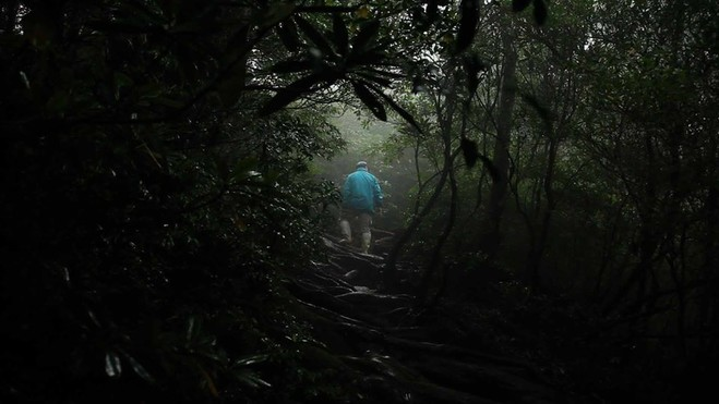 Damien Faure, projection de Milieu - Progress Gallery