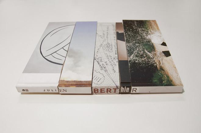 Julien Berthier - Galerie G-P & N Vallois