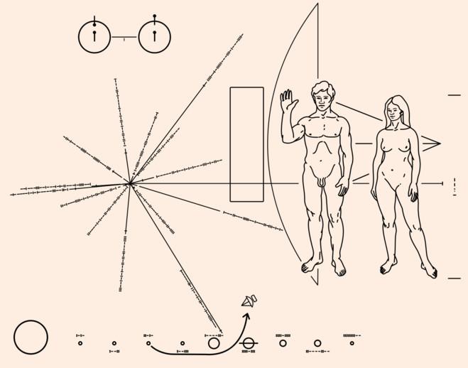 O Universo Nu - Le BAL