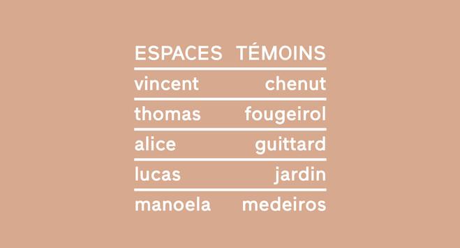 Espaces Témoins - Galerie Praz-Delavallade