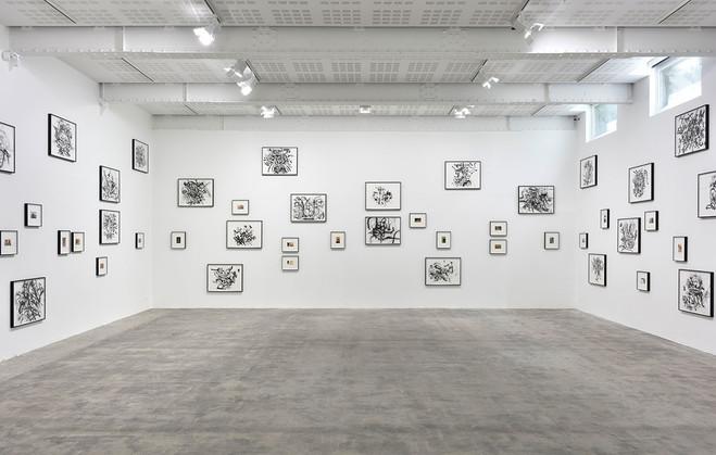 Tacita Dean & Julie Mehretu - Galerie Marian Goodman