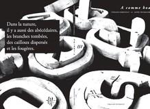 A comme Boa—Présentation de l'ouvrage - Fondation d'entreprise Ricard