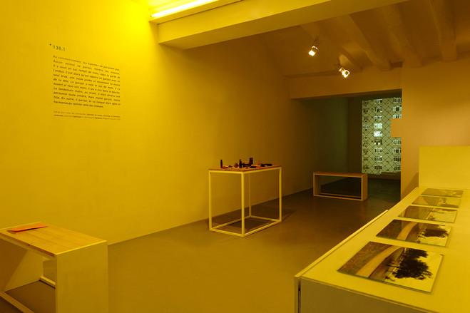 Protopoème : Sol, Sono & Urubus - Dohyang Lee Gallery