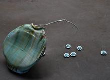 Zhuo Qi - Galerie Les filles du calvaire