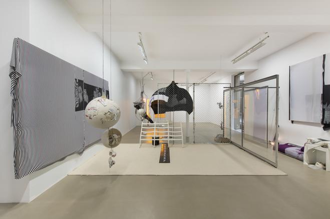 David Douard - Galerie Chantal Crousel